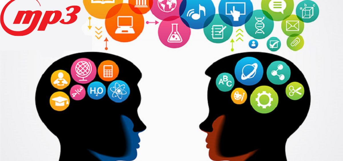 در باره مغز چقدر می دانیم ؟